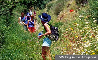 Walking in Las Alpujarras