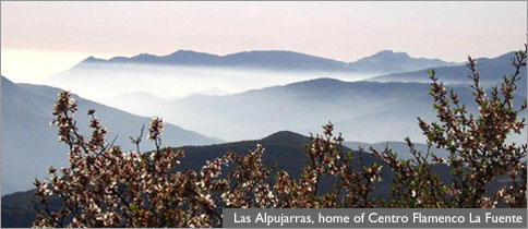View of Las Alpujarras